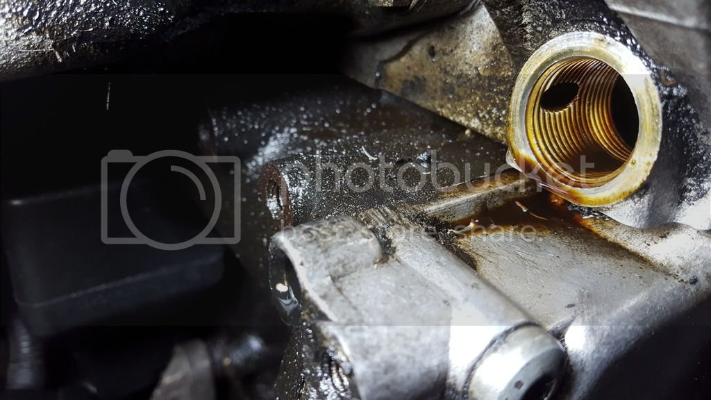 Oil leak on main serpentine belt - (passenger side